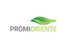 + Transoriente- Promioriente S.A. E.S.P.
